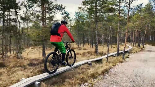 A Man Riding a Bike on a Forest Trail