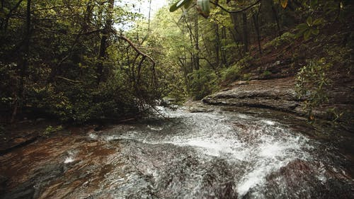 A River Stream Flowing Through Bed Of Rocks