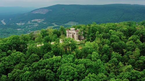 A Castle On Top Of The Forest Hill