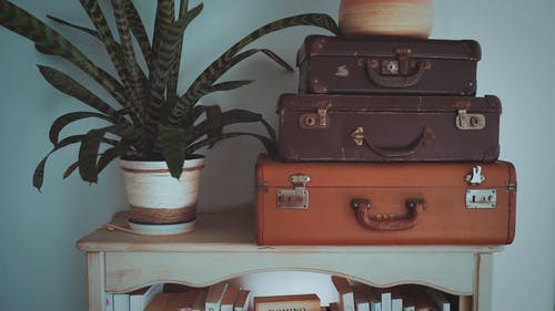 A Wooden Shelves Filled With Books And Old Cameras