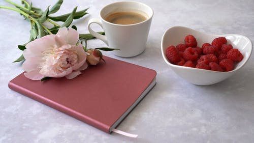 Pink Flower on Top of a Notebook