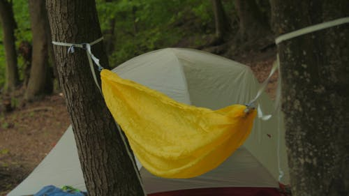 Building A Tent And Hammock In The Forest Camping Site