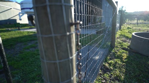 View of a Fence During Daytime