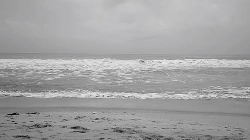 Ocean Waves in Black and White Footage