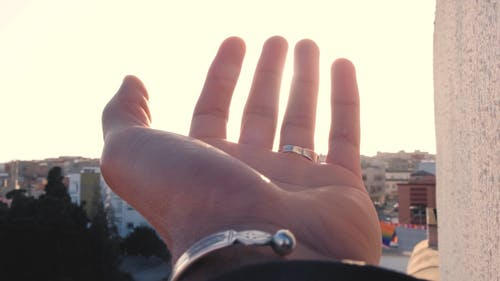 A Close up of a Hand in the Sunlight