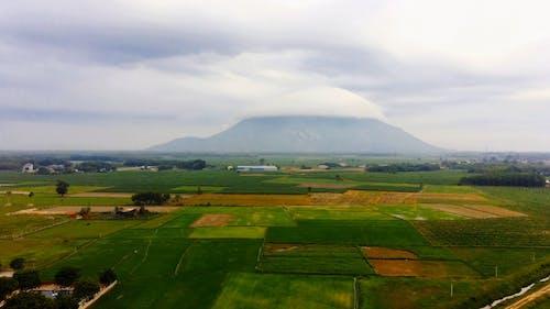 Aerial Footage of Open Fields