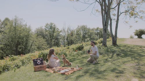 A Couple Having Picnic With Their Dog On A Hilltop