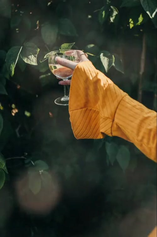 A Person Holding a Wine Glass