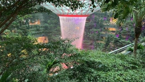 An Indoor Waterfall in Jewel Changi Airport
