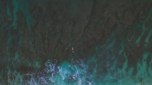 Person On Surfboard In The Middle Of The Sea