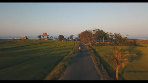 Drone View Of A Road Between Croplands Leading To A Beach