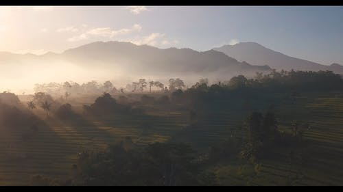 Scenic Video Of Cropland During Dawn