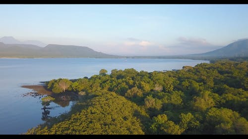 Drone Flying Of The Forest And Lake Water