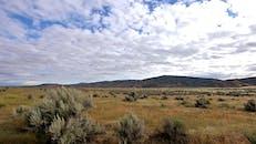 Grassland Under A Cloudy Sky