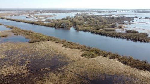 Video Of Riverbank During Daytime