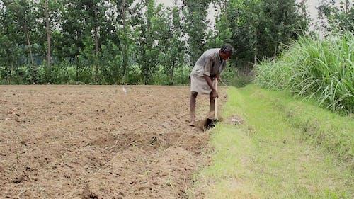 Man Cultivating The Soil Of A Farmland