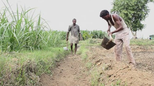 Two Men Cultivating The Land And Making Plots