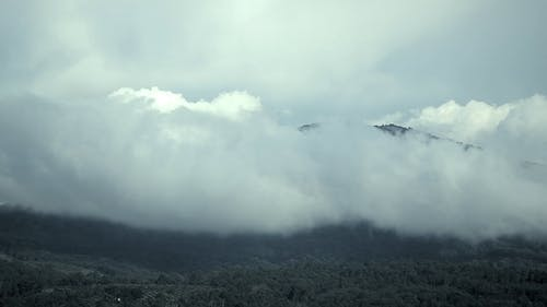 Low And Thick Clouds Above A Mountain And Forest