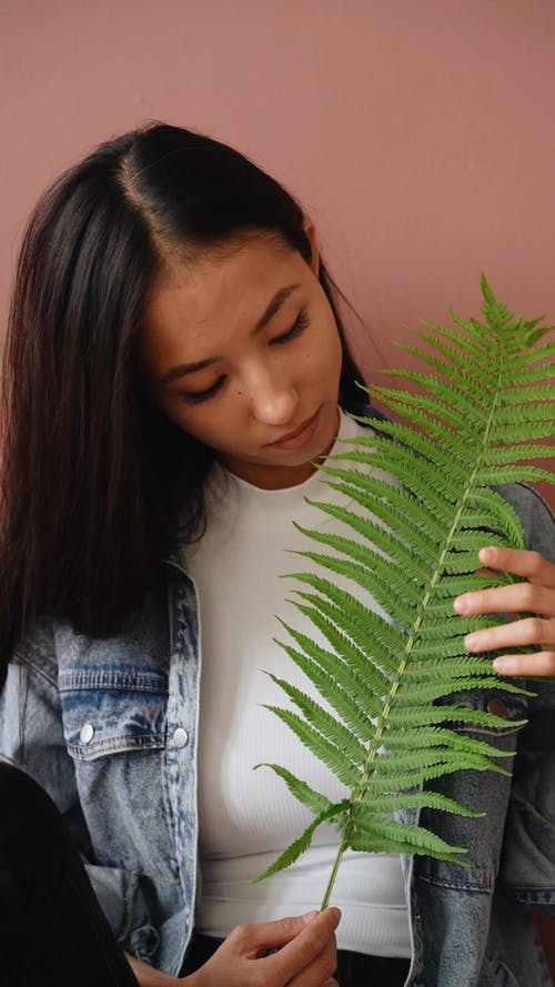 Woman Touching The Leaves On A Stem Of A Fern Plant