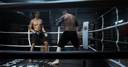 Two Men Showing Sportsmanship In Sparring