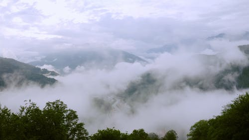 Thick Fogs Covering The Mountain Valley