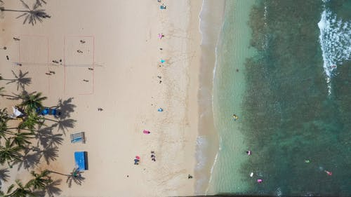 Top View of People on Beach
