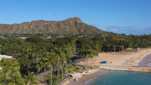 Aerial View of Beach and Trees Across the Mountain