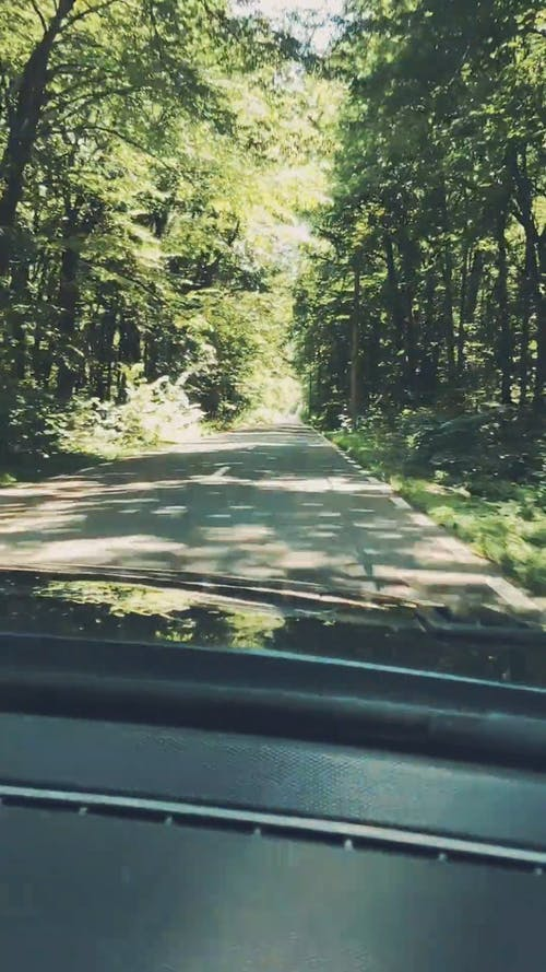 Video Of Roadtrip During Daytime