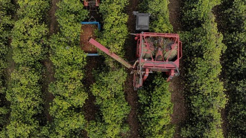 Drone Footage Of Tractor Harvesting On A Farmland