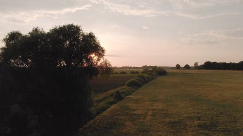 Scenic Video Of Farm Field During Dawn