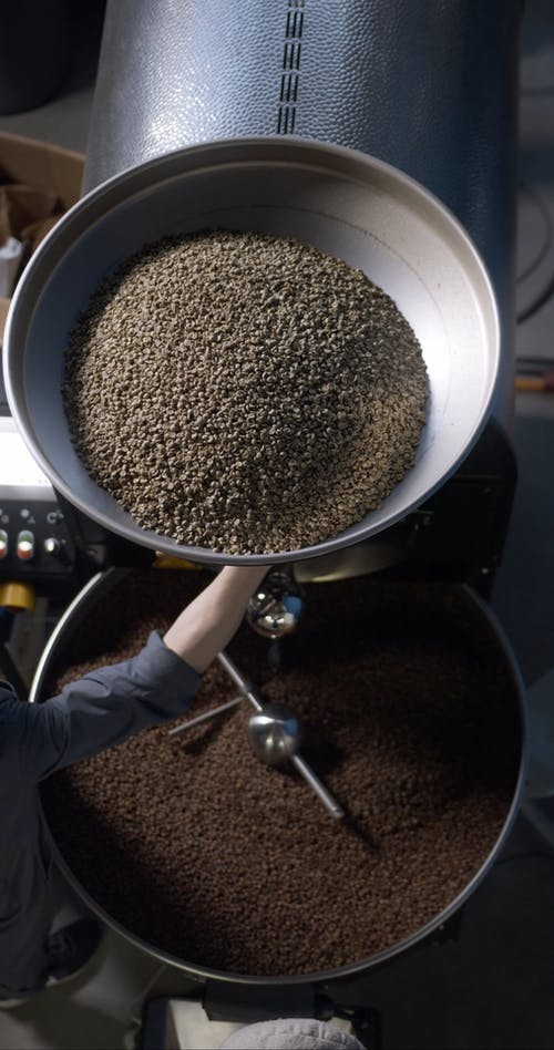 Processing Raw Coffee Beans In A Factory