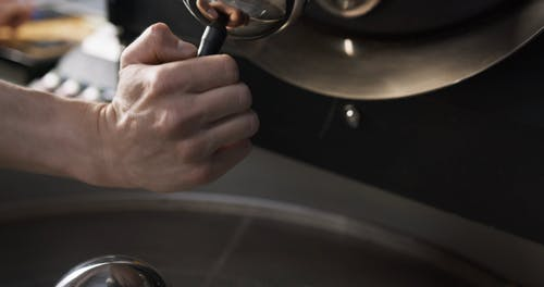 Transferring Newly Roasted Coffee Beans To The Cooling Machine