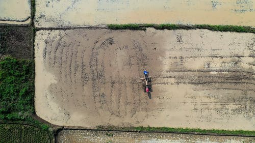 Top View of Person Sowing His Farmland