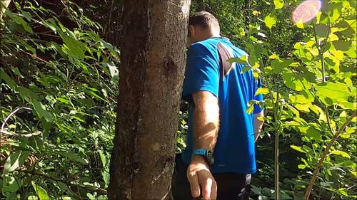A Man Trekking a Forest