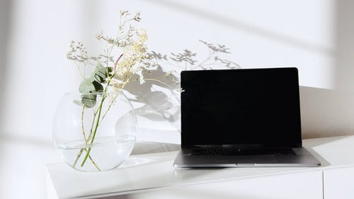 Laptop Computer on White Surface Beside the Decorative Plant in Glass Vase