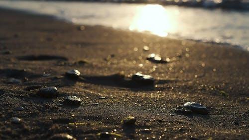 Sea Waves Crashing on Beach Shore During Golden Hour