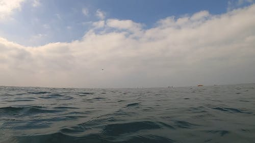 Waves On The Deep Pert Of The Open Sea
