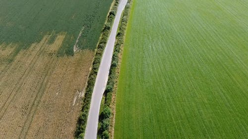 Drone Flying Over An Agricultural Field