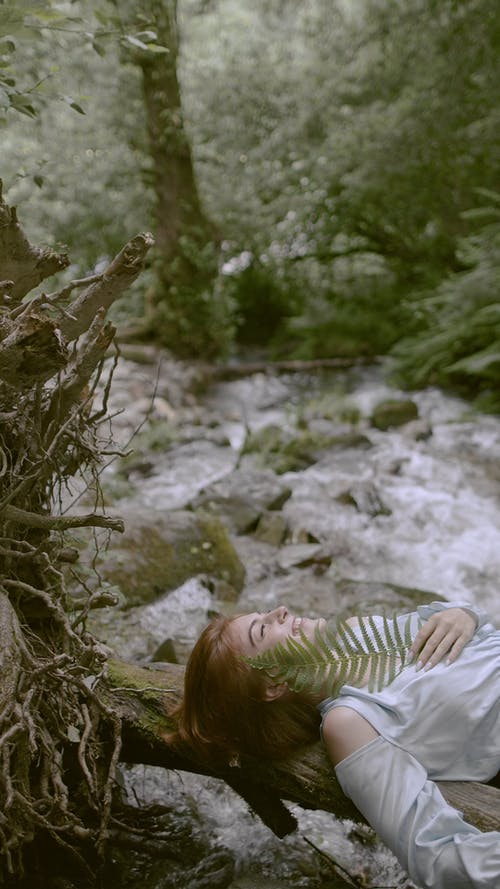 Person Pose and Laying on a Tree Trunk in the Forest