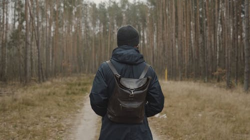 A Man Walking in a Footpath Between Tall Trees