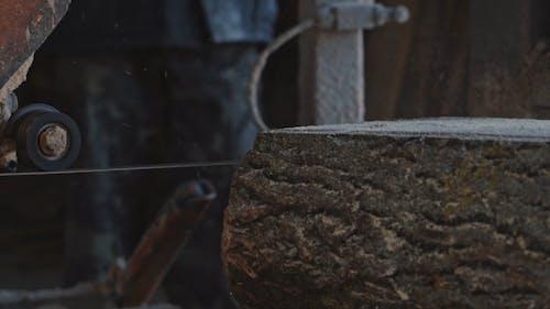 Cutting Wood Log