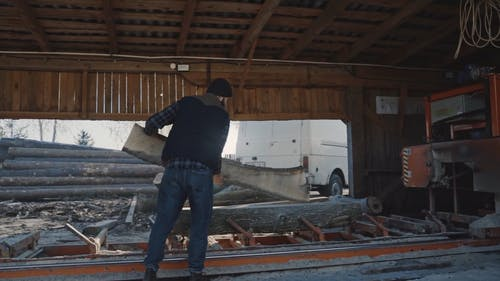 Men Cutting Logs