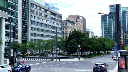 Vehicles Driving Around the City During Daytime