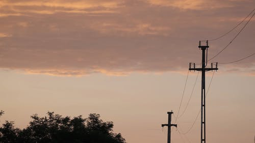 Silhouette of Electric Posts