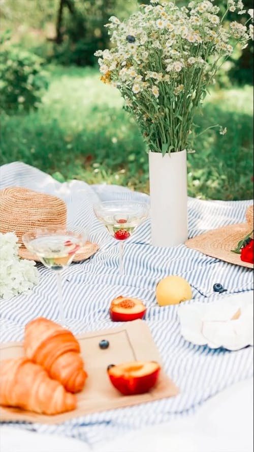 Close-Up Video Of Picnic Setting