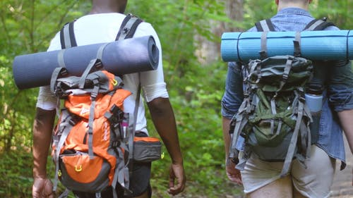 Two Backpackers Walking in the Forest