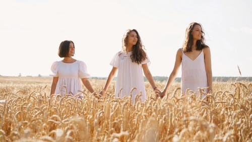 Women Holding Hands while in the Field
