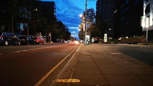 Busy Street at Night near a Hotel