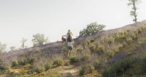 Family of Three Members Walking through a Lavender Field