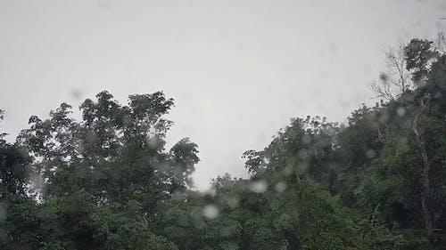Video of a Heavy Rainfall